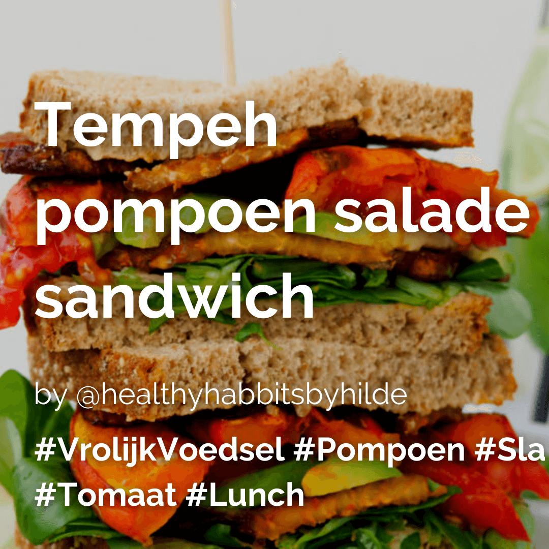 Lees meer over het artikel Tempeh pompoen sandwich @healthyhabbitsbyhilde